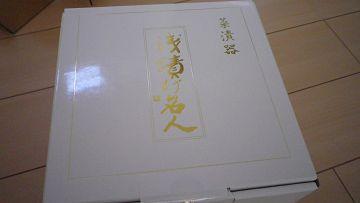 2010_06100008-s.JPG