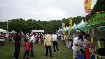 2010_10110016-s.JPG